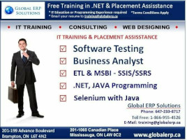 Global ERP Solutions Business Analyst Course